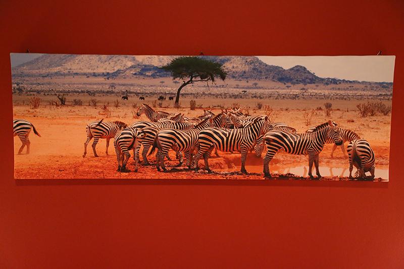 chambre africaine gite les roches tous droits reserves