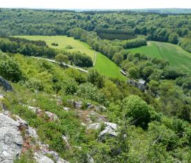 Promenades et randonnées guidées du parc de Viroin-Hermeton 2017