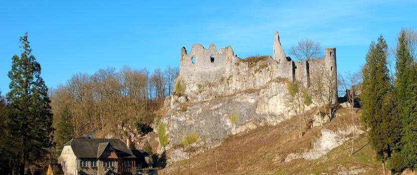 Ruines du château fort de Montaigle